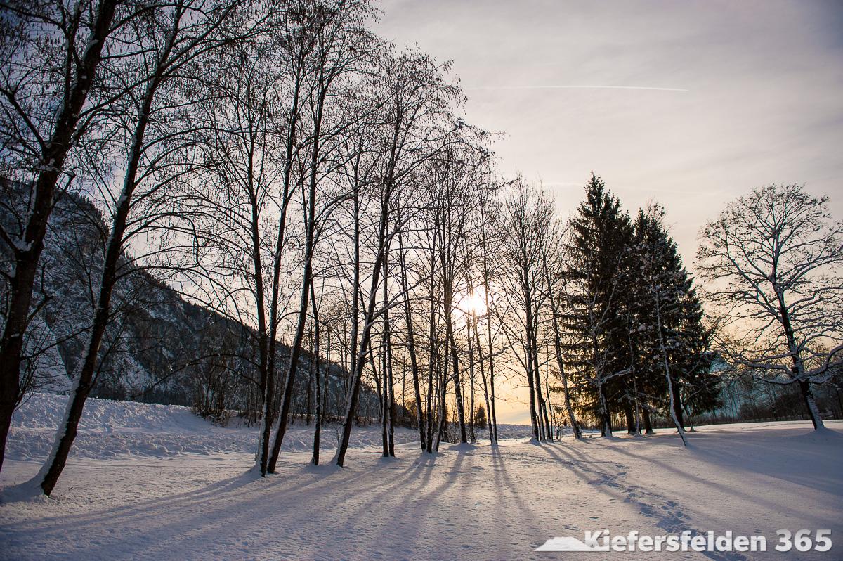 01.02.2015 - Kieferer See
