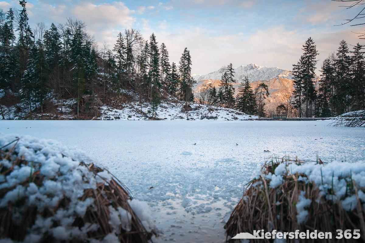 23.02.2015 - Pfrillsee