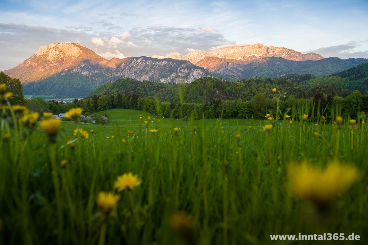 04.05.2015 - Kaisergebirge in der Abendsonne
