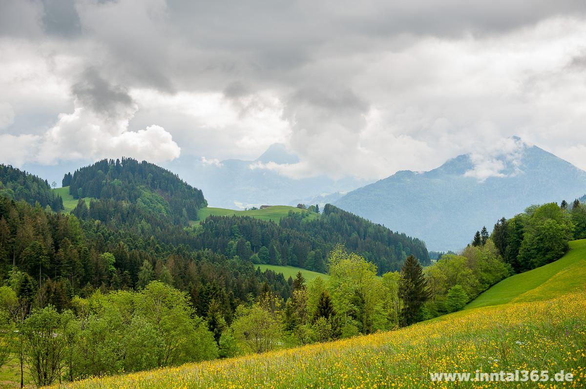 30.05.2015 - Wildbarren und Brünnstein