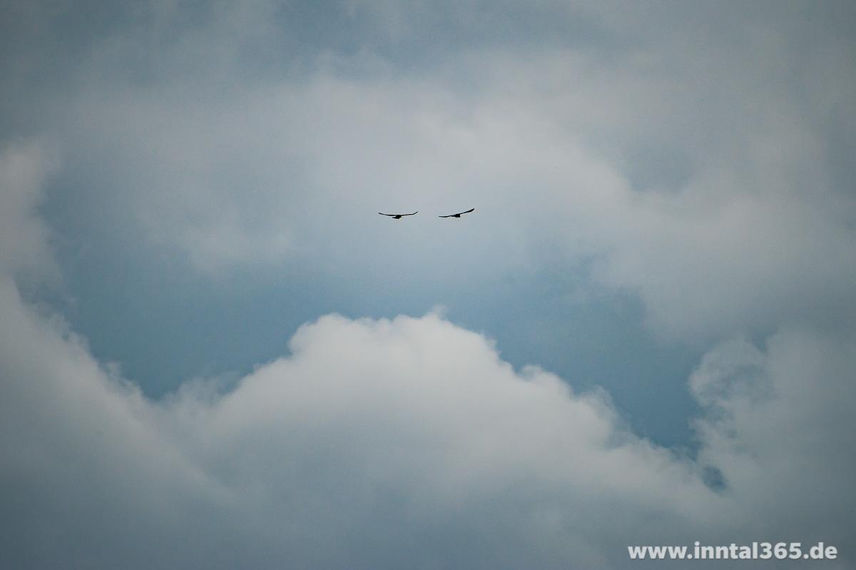 25.09.2015 - Flugspaß bei jedem Wetter