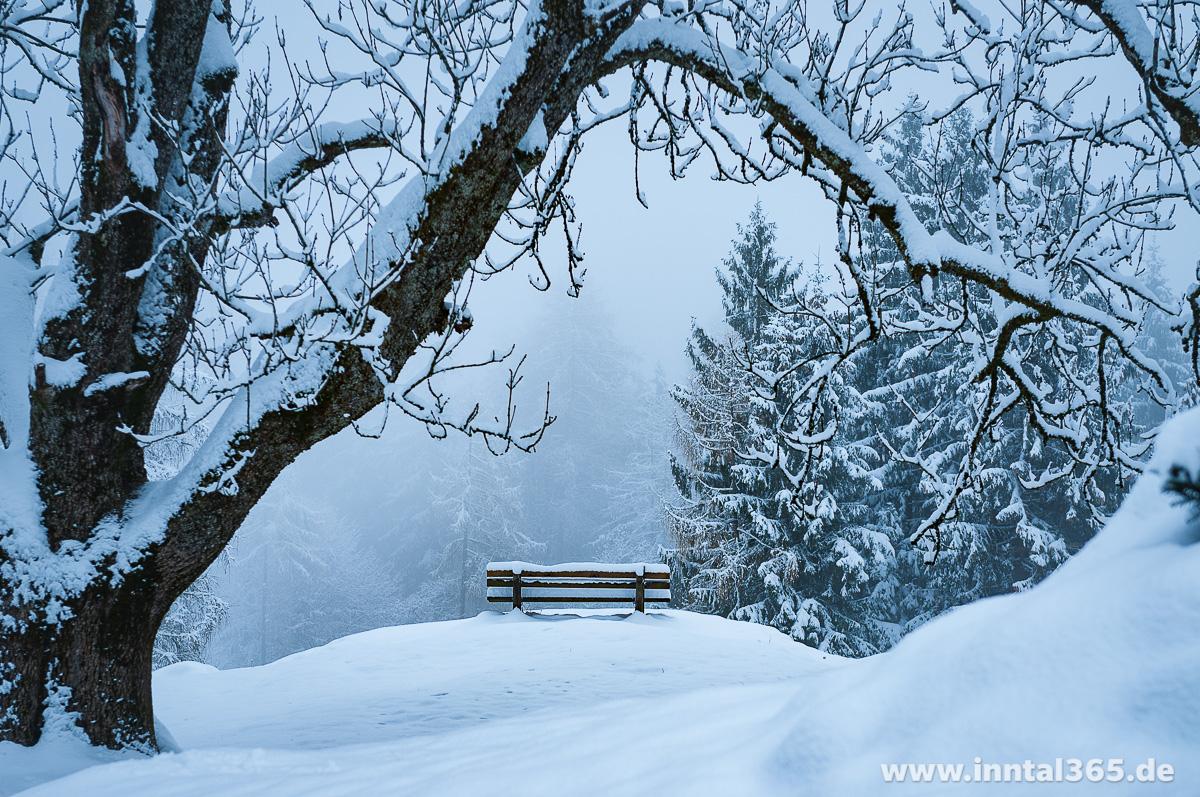 26.11.2015 - Erste Schneewanderung auf den Nusslberg