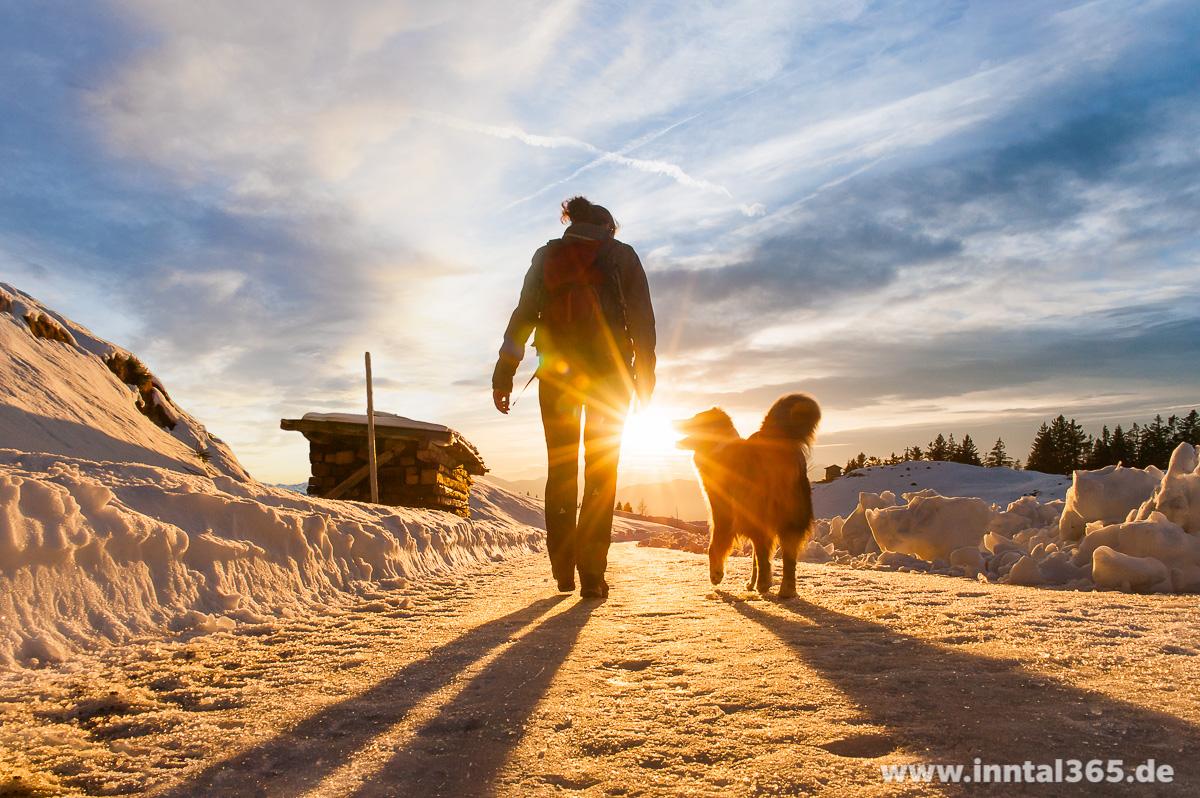 01.02.2016 - Wandern mit Hund
